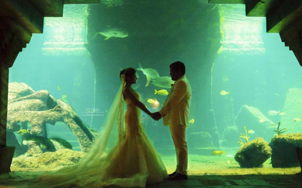 Fantastic Lazzaro Wedding Dress Festooning - All Wedding Dresses ...